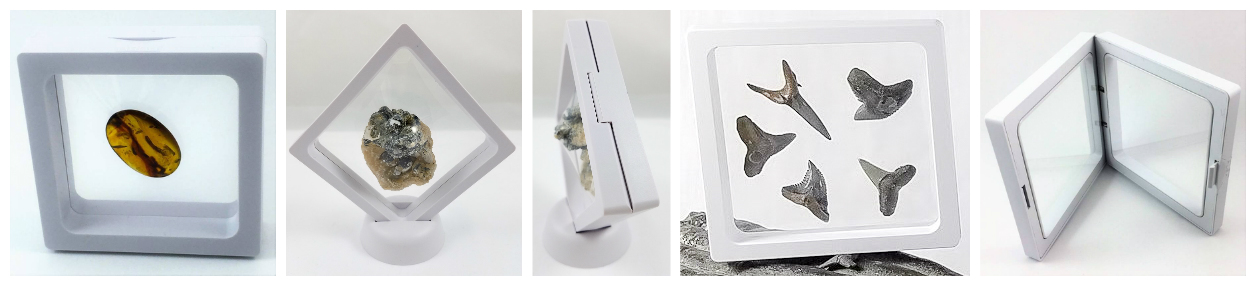 White Floating Frame Display Cases With Fossils